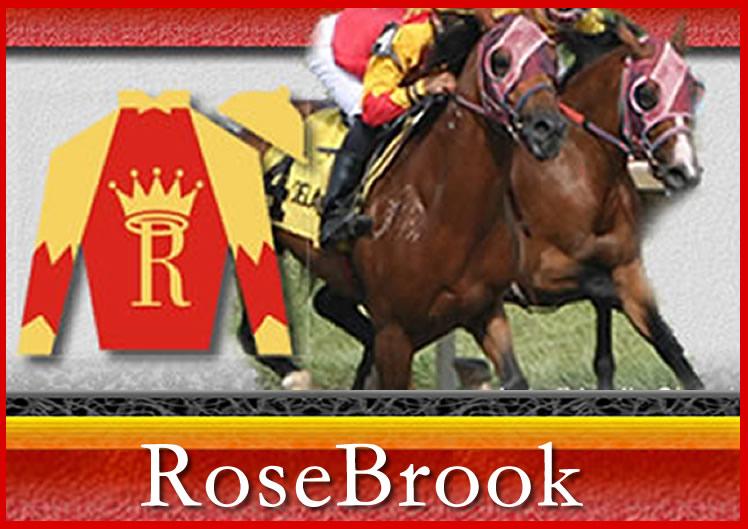 RoseBrook Arabians